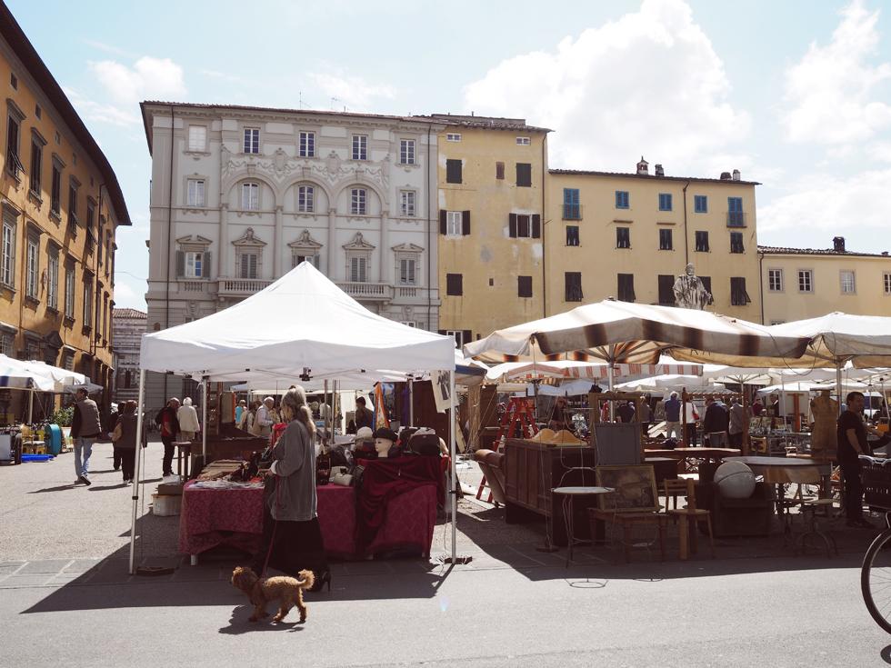 liselottefleur-italia20160006