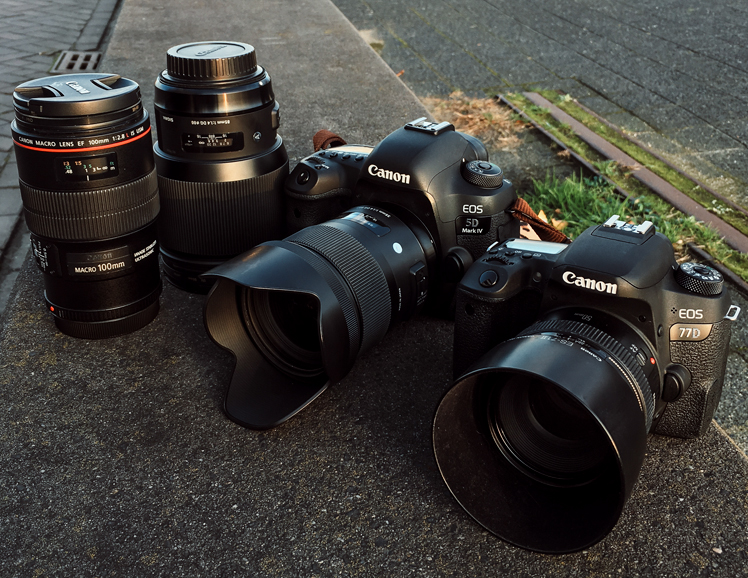 Lenses on Crop vs. Full Frame Cameras • The Fashion Camera